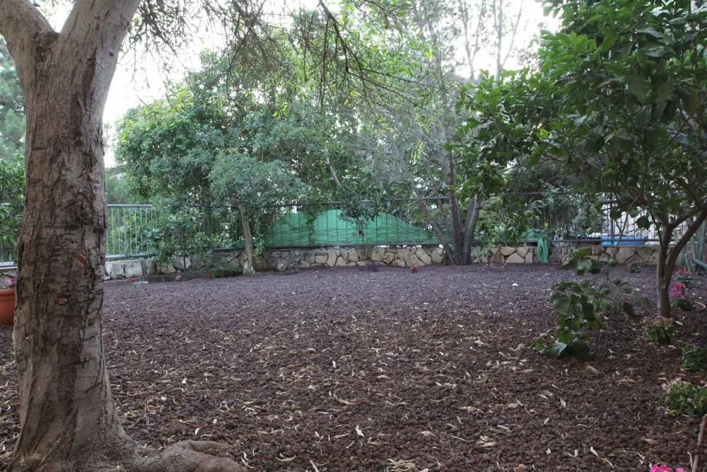 מותג חדש דירת גן ייחודית, שקטה, איכותית, בנצרת עילית   יניב הס QX-37