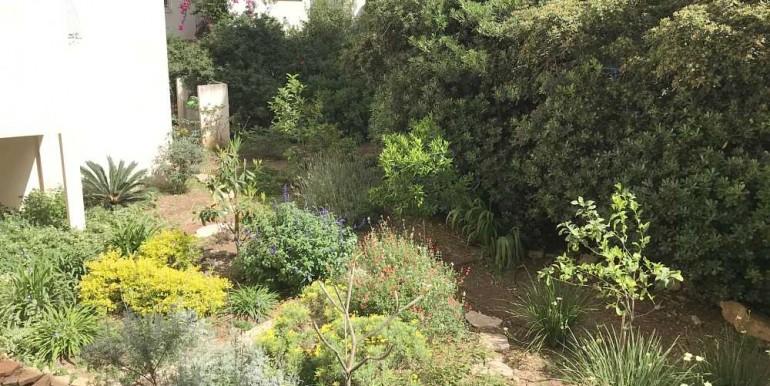 הגינה המשותפת